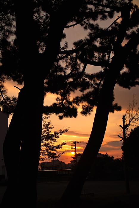 今日の夕景。_e0139093_20161273.jpg