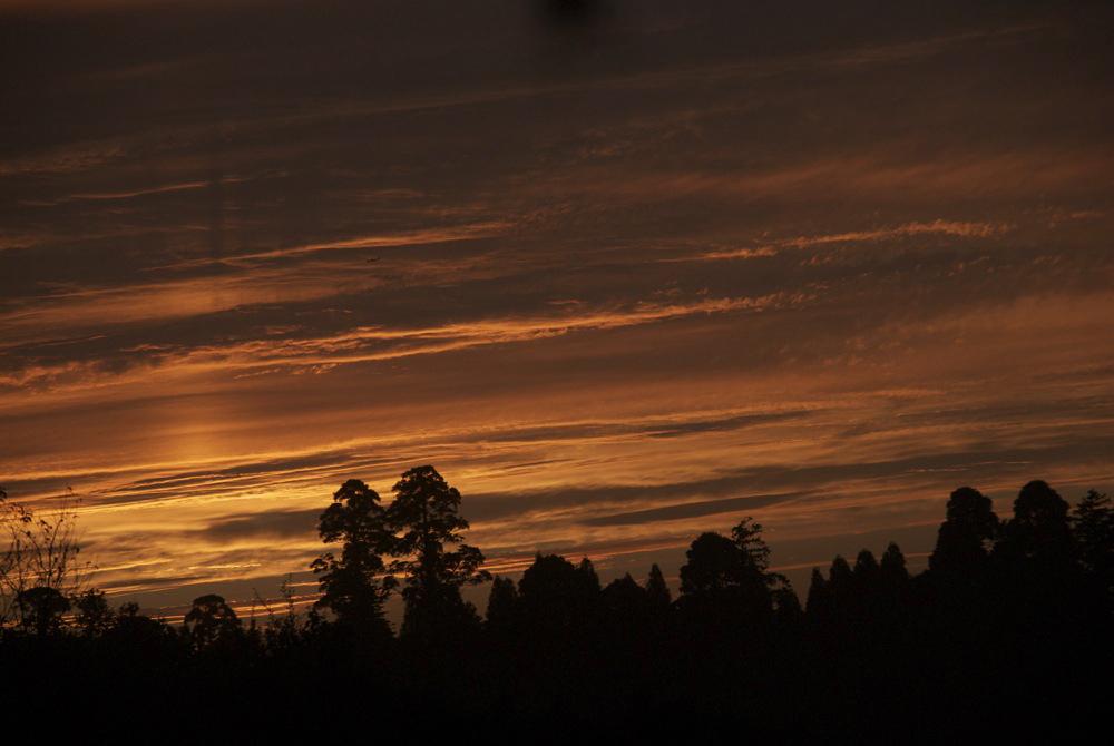 昨日の夕焼け。_c0127403_2184425.jpg