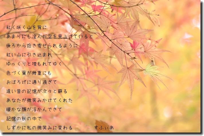 b0152416_22481118.jpg