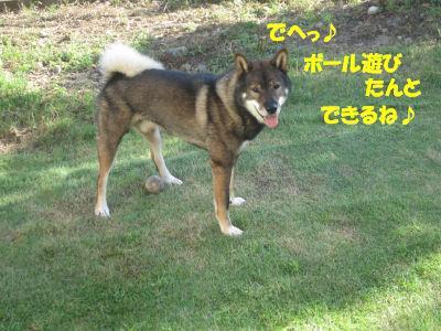 f0143123_19501493.jpg