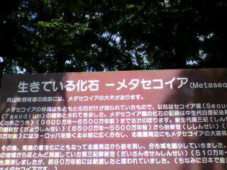 お散歩♪_d0004447_14372076.jpg