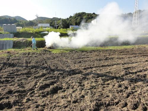 H12年10月 岬高校「山海人プロジェクト:菜の花畑」_c0108460_16113953.jpg