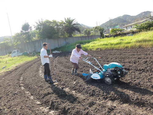H12年10月 岬高校「山海人プロジェクト:菜の花畑」_c0108460_16161666.jpg