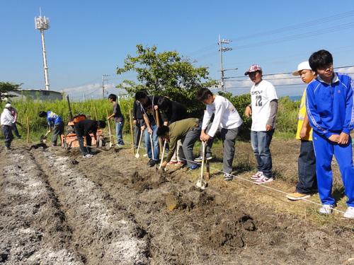 H12年10月 岬高校「山海人プロジェクト:菜の花畑」_c0108460_16264826.jpg