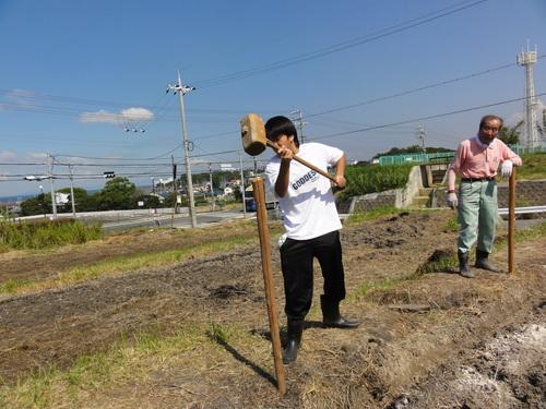 H12年10月 岬高校「山海人プロジェクト:菜の花畑」_c0108460_1631344.jpg