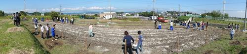 H12年10月 岬高校「山海人プロジェクト:菜の花畑」_c0108460_16451165.jpg