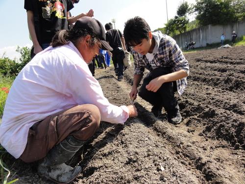 H12年10月 岬高校「山海人プロジェクト:菜の花畑」_c0108460_1751151.jpg