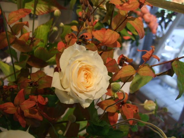 オークリーフ花の教室(松崎さんの作品)_f0049672_13594569.jpg
