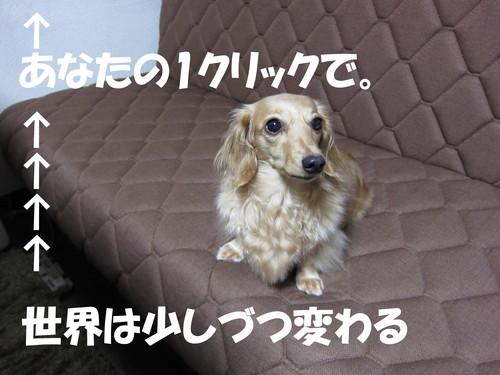 b0200291_1745857.jpg