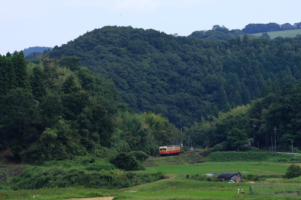 駅が楽しい小湊鉄道(おまけ)_b0190710_23453044.jpg