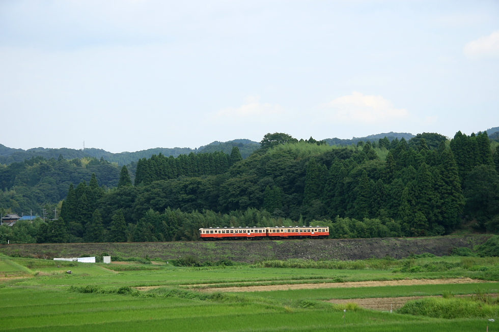 駅が楽しい小湊鉄道(おまけ)_b0190710_2345459.jpg