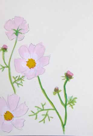 秋の草花いろいろ・大人クラス_f0211514_21312.jpg