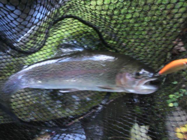 10月 初釣り_e0173533_21354711.jpg
