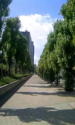 sunny day_b0130734_15421162.jpg