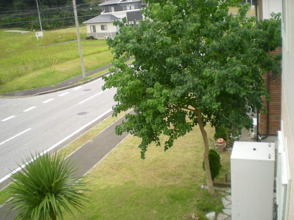 2010年10月7日(木)秋なすとバラ!_f0060461_9264288.jpg