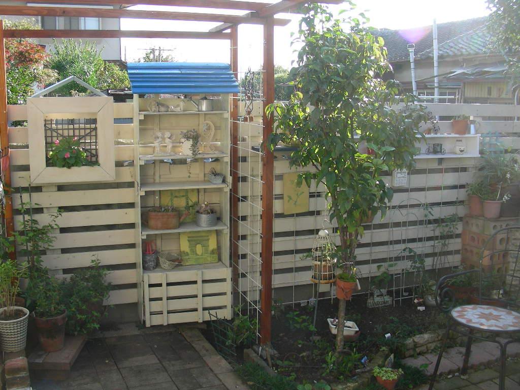楽しい庭遊び~♪_b0096584_1833279.jpg