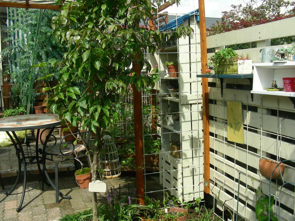 楽しい庭遊び~♪_b0096584_18341069.jpg