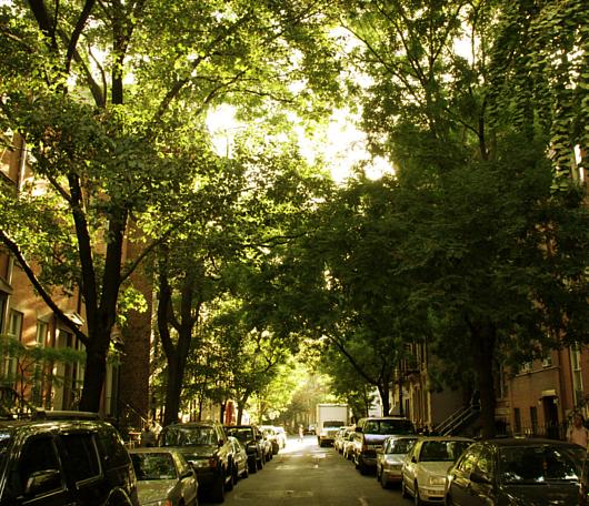 初秋のブリーカー通り(Bleecker St)沿いの風景_b0007805_14162574.jpg