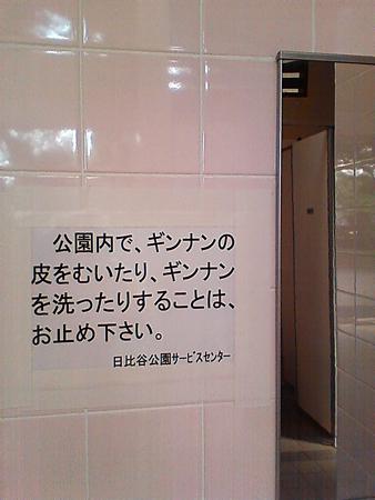 d0171219_8343079.jpg