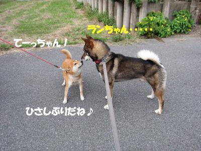 f0143123_20123183.jpg