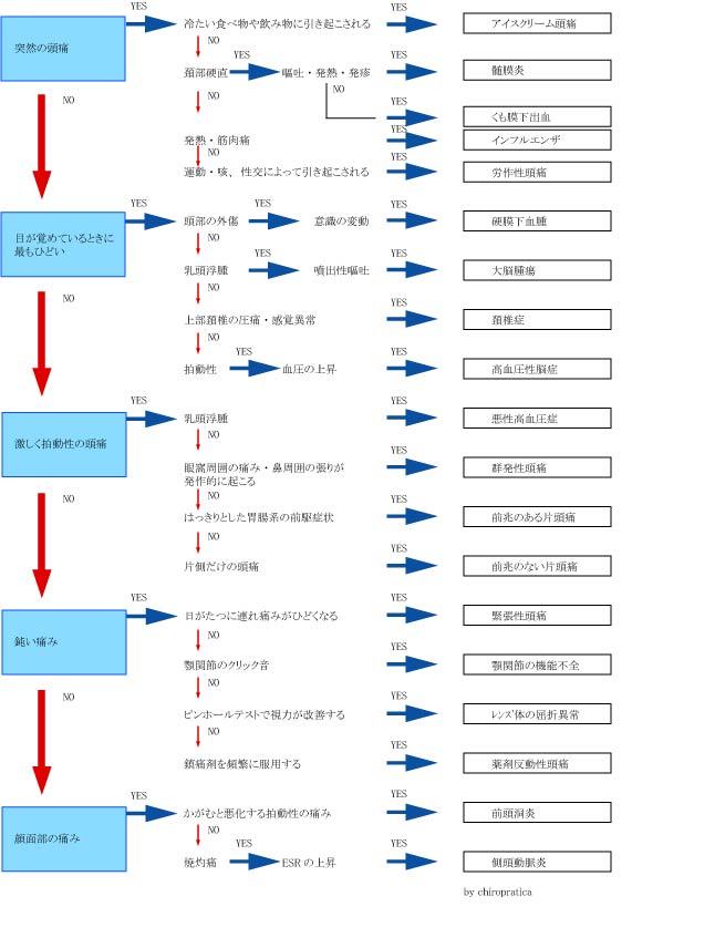 b0195635_23103238.jpg