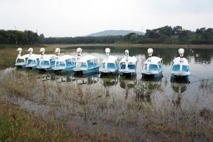 慶州普門湖畔のホテル ホテルコンコード慶州 韓国の旅 2010年10月(2)_f0117059_9574985.jpg