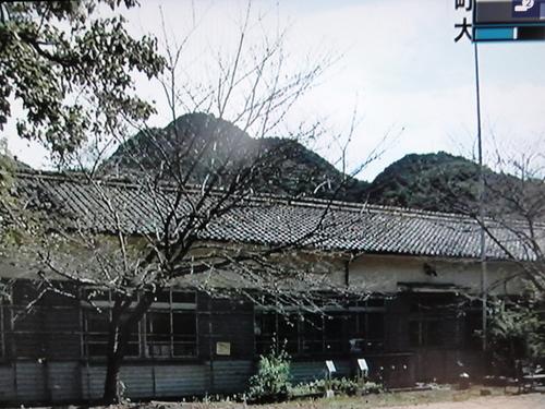 「大人の林間・臨海学校」 NHK全国ニュースで放映!!_c0108460_1581810.jpg