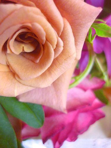 Bon anniversaire ! 19 ☆Chapelle Notre Dame de la Medaille Miraculeuse。。。.♡*† *・。・。+_a0053662_10531195.jpg