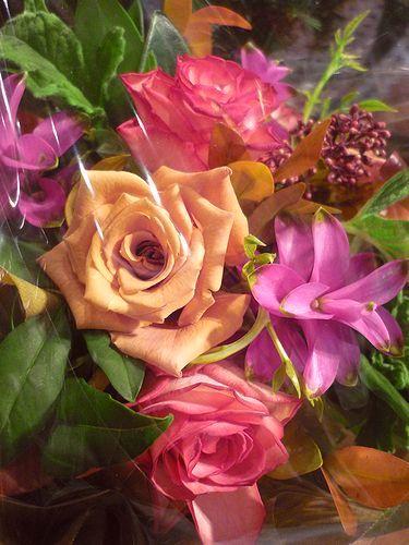 Bon anniversaire ! 19 ☆Chapelle Notre Dame de la Medaille Miraculeuse。。。.♡*† *・。・。+_a0053662_10542777.jpg