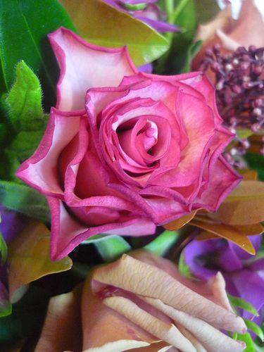Bon anniversaire ! 19 ☆Chapelle Notre Dame de la Medaille Miraculeuse。。。.♡*† *・。・。+_a0053662_10554835.jpg