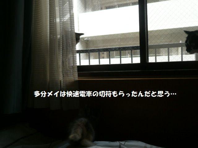 e0094407_05465.jpg