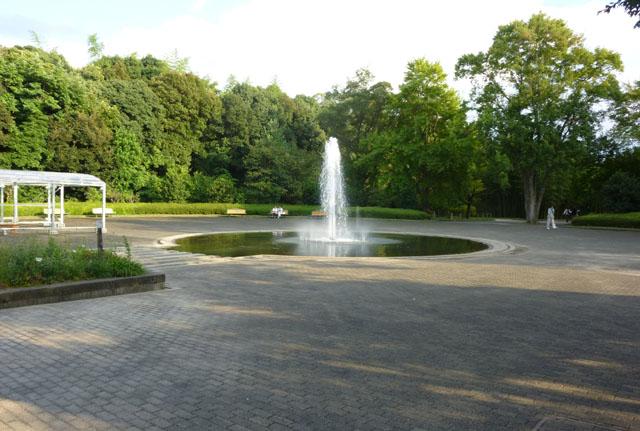 植物園の秋の花2_e0048413_17485625.jpg