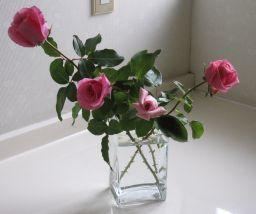 清潔な香りのハーモニー_c0165824_1032172.jpg