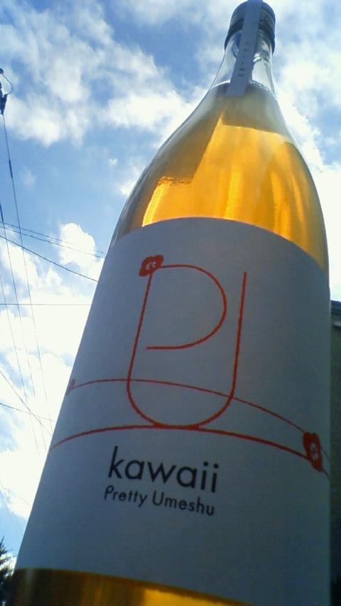 【地梅酒】 プリティー梅酒 かわいい_e0173738_11145685.jpg