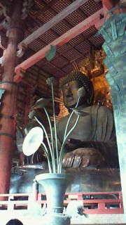 奈良へ_b0105458_11552481.jpg