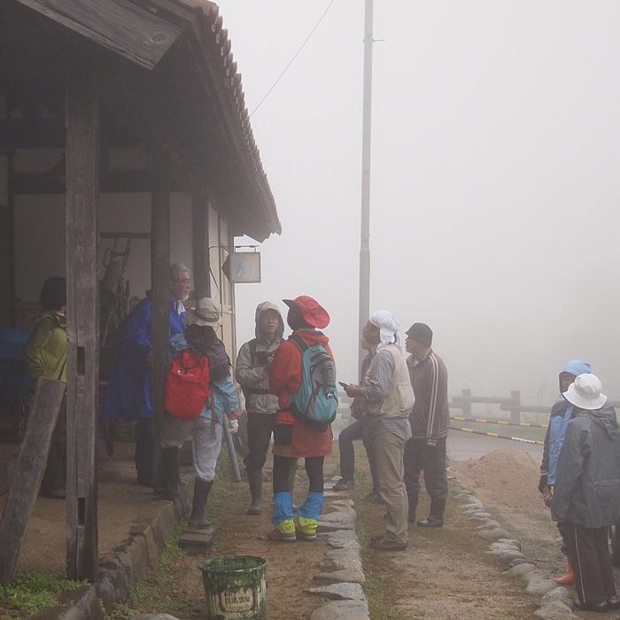 雨の深入山 1_f0099102_0242889.jpg