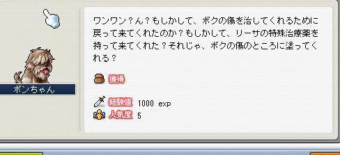 f0127202_2341310.jpg