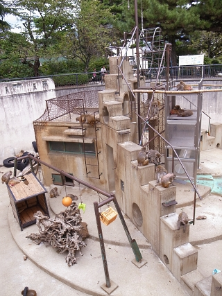 大正12年ゾウ舎のレリーフをあおいで~大人のための京都市動物園案内_c0069903_10573545.jpg