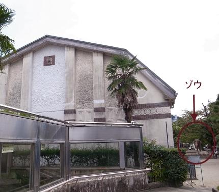 大正12年ゾウ舎のレリーフをあおいで~大人のための京都市動物園案内_c0069903_10585931.jpg