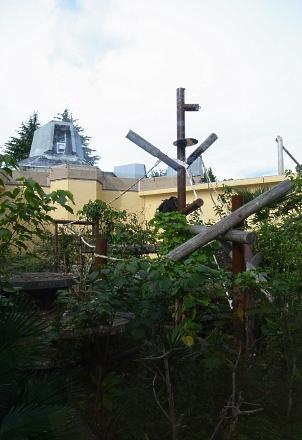 大正12年ゾウ舎のレリーフをあおいで~大人のための京都市動物園案内_c0069903_1112647.jpg