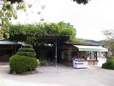 大正12年ゾウ舎のレリーフをあおいで~大人のための京都市動物園案内_c0069903_1114471.jpg