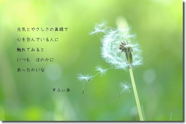 b0152416_1915266.jpg