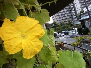 雨の同窓会。_f0113224_1741139.jpg