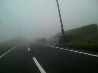 霧の中_d0004447_045638.jpg