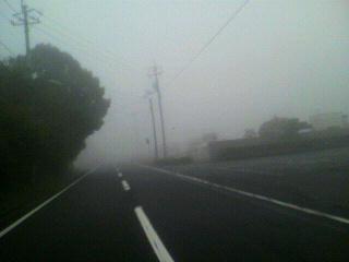 霧の中_d0004447_045642.jpg