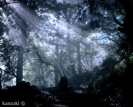 神崎士郎写真空間「フォトトーク ぼくのいる場所へ」 _a0017350_0384227.jpg