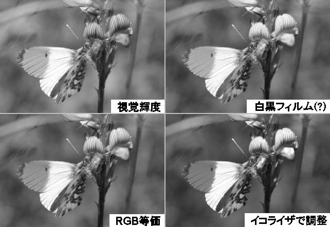 c0226551_19315654.jpg