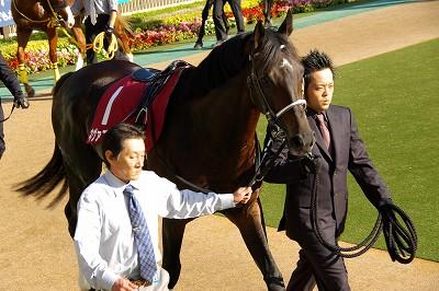 3歳馬強し!毎日王冠はアリゼオがオグリキャップ以来22年振りの3歳馬優勝の快挙達成_b0015386_23224778.jpg