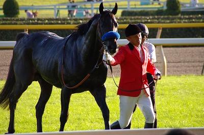 3歳馬強し!毎日王冠はアリゼオがオグリキャップ以来22年振りの3歳馬優勝の快挙達成_b0015386_23234732.jpg