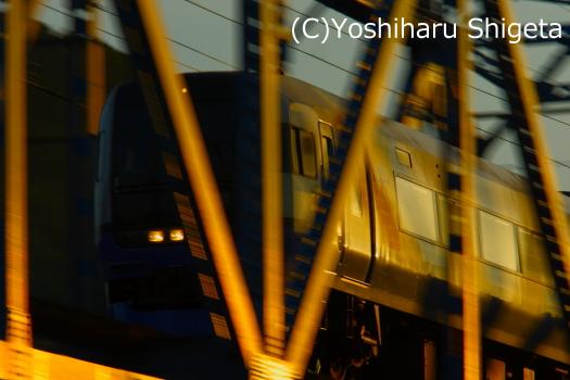 ~Golden VIEW 2010~_c0152400_025369.jpg